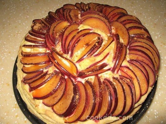 frutas-tart-19