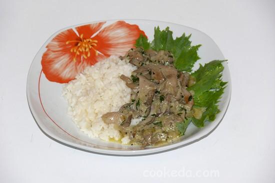 вешенки рецепты приготовления со сметаной