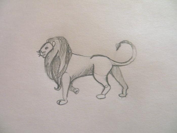 лев карандашом поэтапно-01