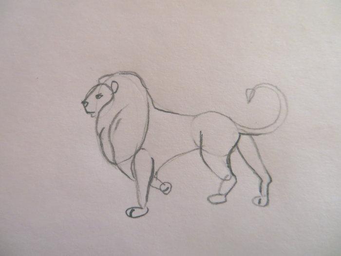 лев карандашом поэтапно-06