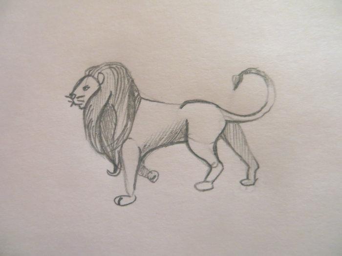 лев карандашом поэтапно-07