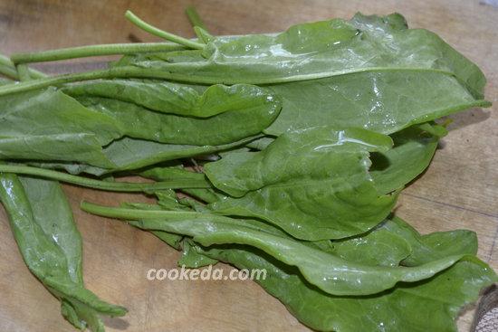 зеленый борщ с щавелем-12