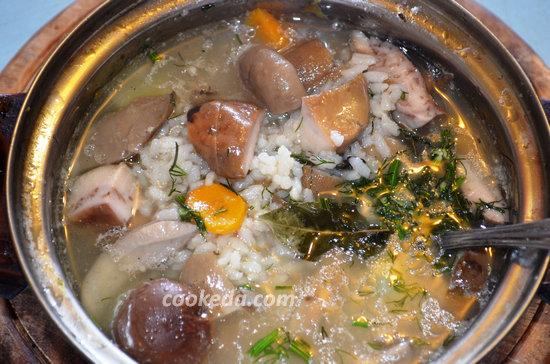 суп из белых грибов-07