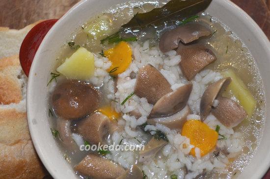 того, грибной суп из свежих грибов рецепт с фото качественном термобелье