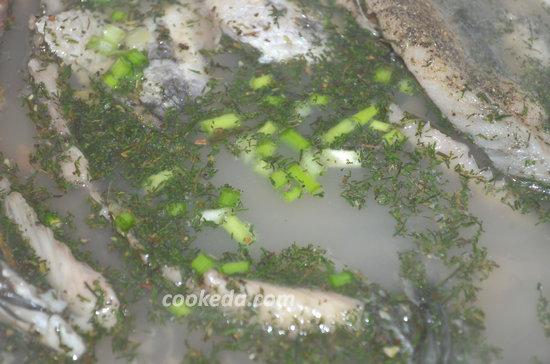уха из пресноводной рыбы-07