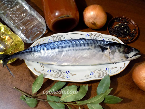 скумбрия салат рецепт с фото