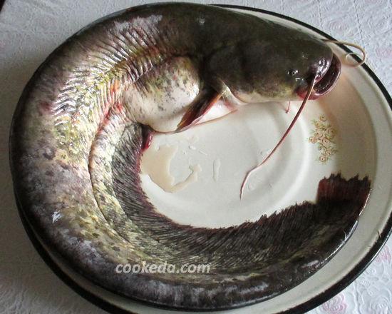 рецепт приготовления сома в духовке целиком с фото